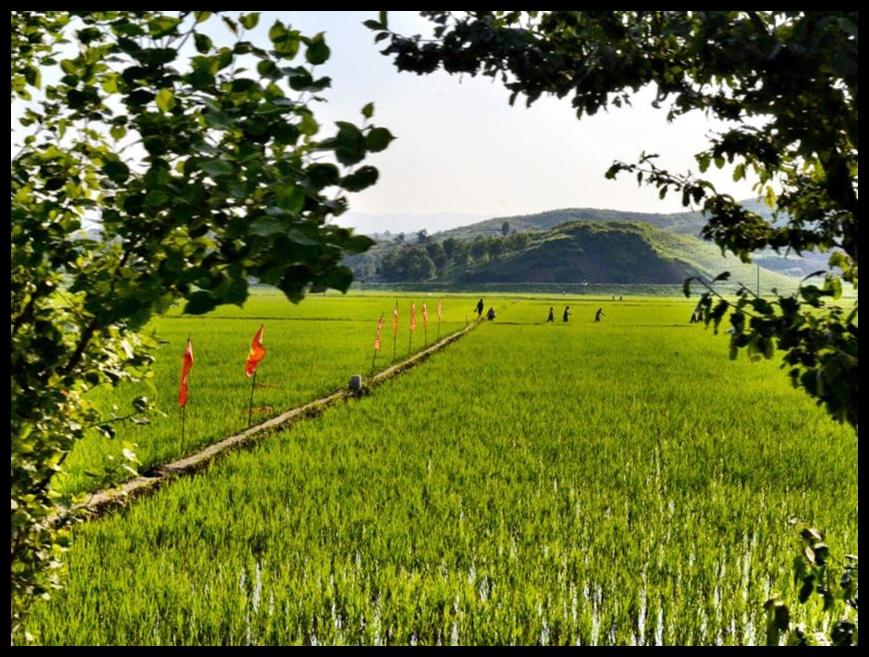 Chong Sun Farm - die gekollektiviseerde plaas wat ons besoek het.