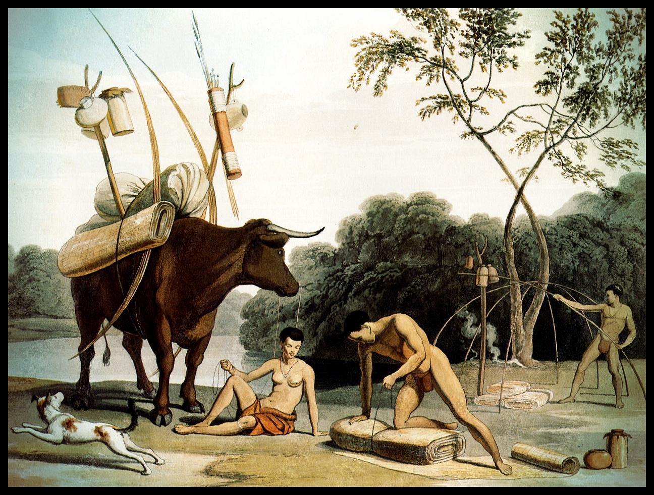 5. Khoikhoi